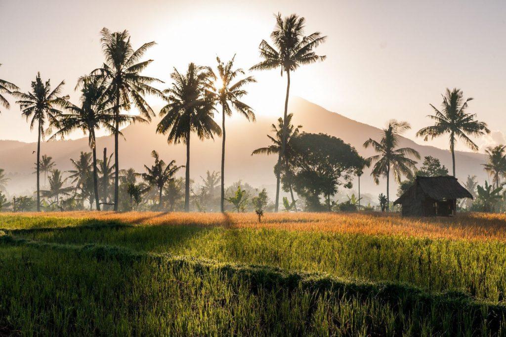 Климат и погода на Бали в зависимости от сезона