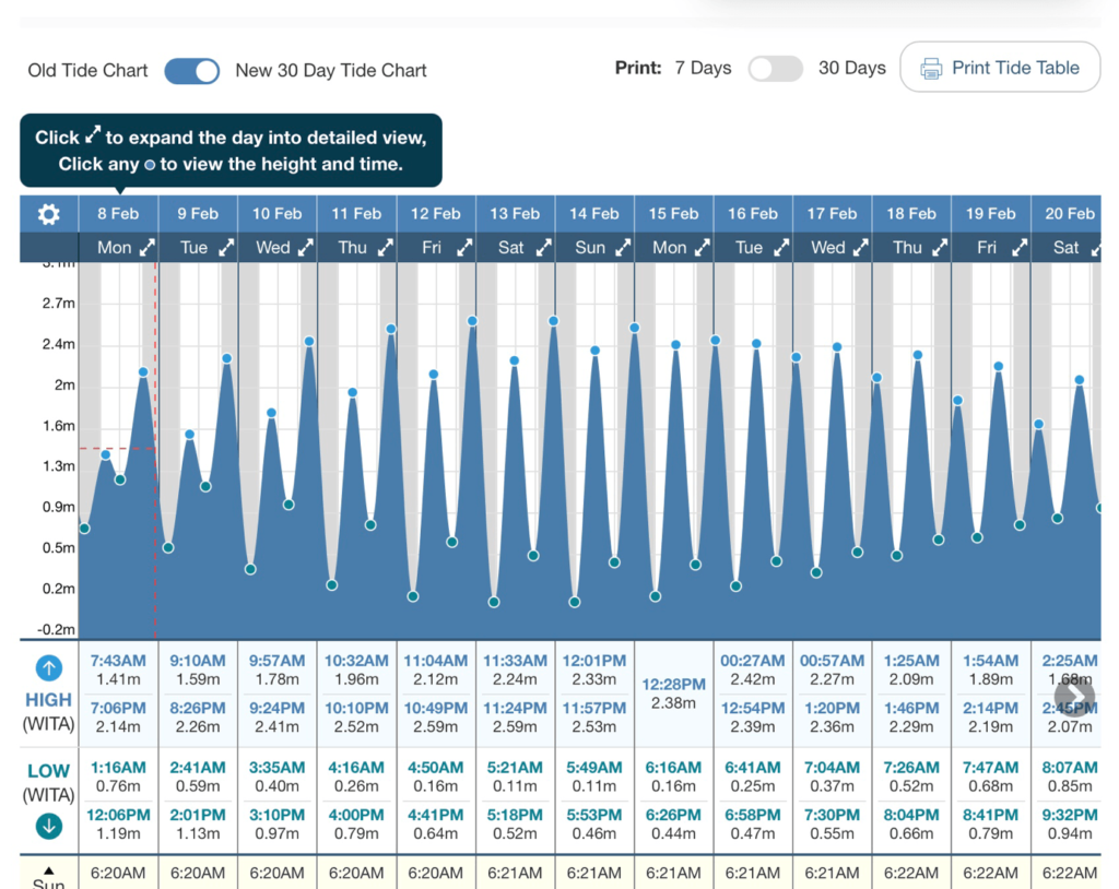 График приливов и отливов на Бали с сайта tide-forecast