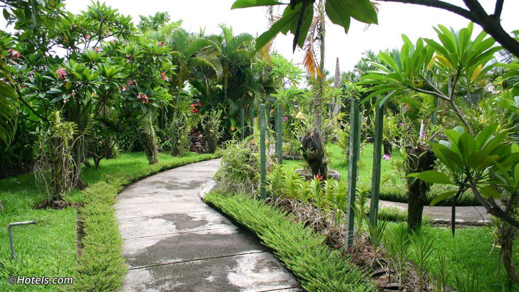Посетите Bali Orchid Garden если вы едите на пляж Санур